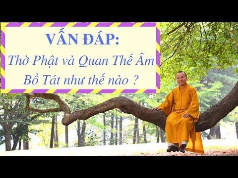 Vấn đáp: Thờ Phật, thông điệp kinh A Di Đà, đưa giáo lý Phật giáo vào nhà trường, thực tập vô ngã vị tha  trong đời sống hằng ngày (28/01/2012) Thích Nhật Từ