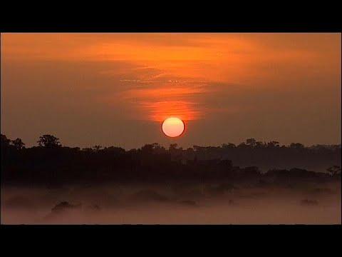 Novo alerta de perigo na Amazônia