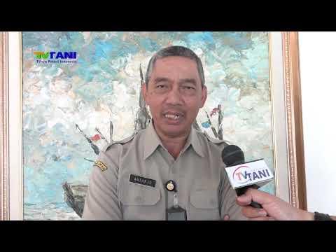 Direktorat Jenderal Perkebunan Siap Untuk Mengedepankan Informasi Publik
