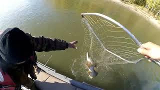 Рыбалка в сузуне на щуку
