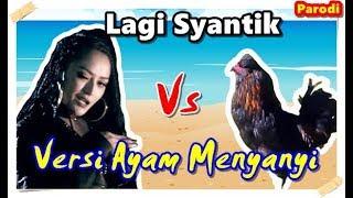 Lagi Syantik   Siti Badriah #Parodi Versi Ayam