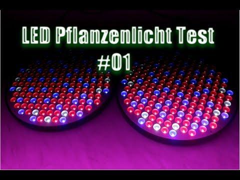 LED Pflanzen Lampen Langzeit Test #01