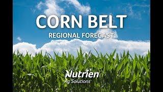 Corn Belt Regional Ag Forecast - May 24 2019