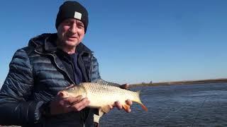 Рыбалка на разливах волги в конце апреля