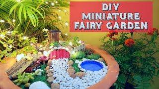 DIY Miniature Fairy Garden | Meet My Son