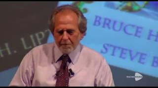 BRUCE LIPTON   The Wisdom Of Your Cells: How Your Beliefs Control Your Biology TRAILER