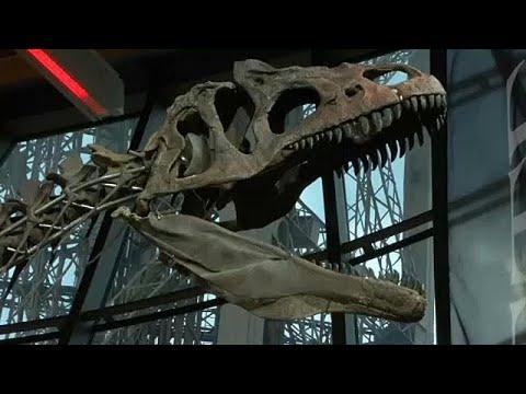 Πωλήθηκε σε δημοπρασία άγνωστο είδος δεινοσαύρου