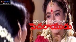 Kadile Kalama Video Song    Pedarayudu Movie Songs    Mohan Babu    Rajinikanth   Soundarya    TVNXT
