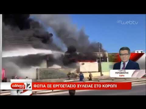 Πυρκαγιά σε κατάστημα στο Κορωπί | 13/10/2019 | ΕΡΤ