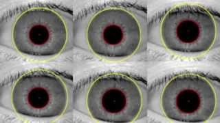 Newswise:Video Embedded prof-says-iris-recognition-gives-smartphone-users-more-security-options