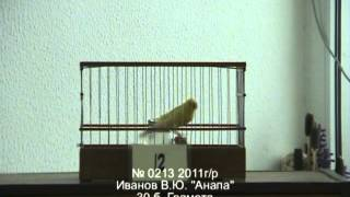 462. 6-й Краснодарский конкурс 2012 г.