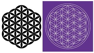 How To Draw The Flower Of Life In Adobe Illustrator