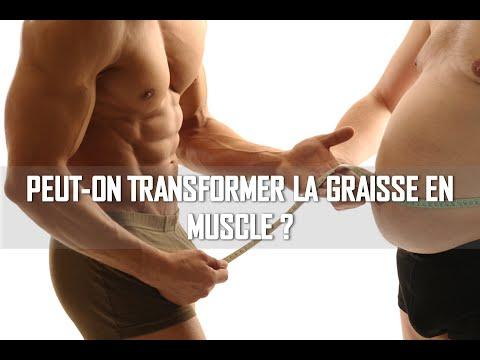 Quels muscles chez vous grandissent plus vite