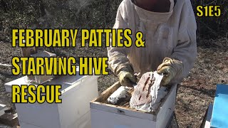 Saving a Bee Hive from Starvation S4E5