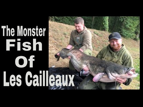 Customer video: Northwestern Fishing at Cailleaux