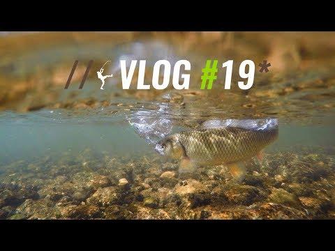 Lingurita oscilanta DUO x D3 Gambrel 3.5cm 3.5g MCC4054