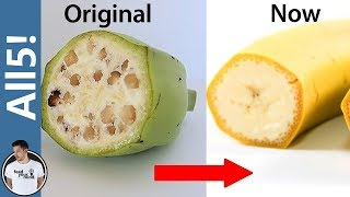 5 Foods Genetically Modified Beyond Recognition