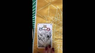 Oracle Shop Celtic Cross Tarot Spread September 2019  ~TIMELESS~