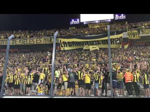 """""""Hinchada de Peñarol - Despacito - Campeón del Siglo"""" Barra: Barra Amsterdam • Club: Peñarol"""