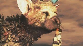 The Last Guardian - Phần 8: Thương Trico quá...