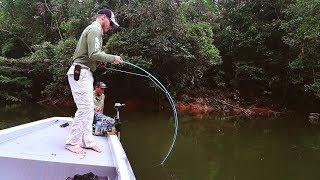 Meu RECORDE De Tucunaré Pinima - FLY FISHING NA AMAZÔNIA