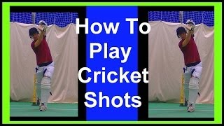 Cricket Coaching Batting Tips How To Play Lofted Drives