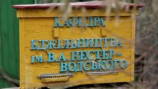 Пасечник №22 -  Музей пчеловодства