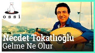 Necdet Tokatlıoğlu / Gelme Ne Olur