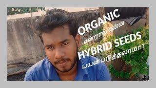 Organic Gardening என்றால் என்ன ? | Hybrid Seeds பயன்படுத்தலாமா ? | Thiram என்றால் என்ன ??