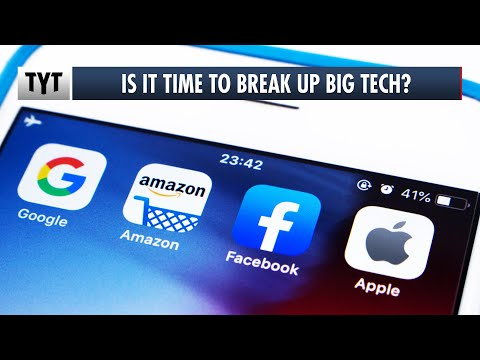 Break Up Big Tech?