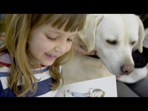 Imagen del vídeo Niños y mascotas leyendo juntos en la escuela