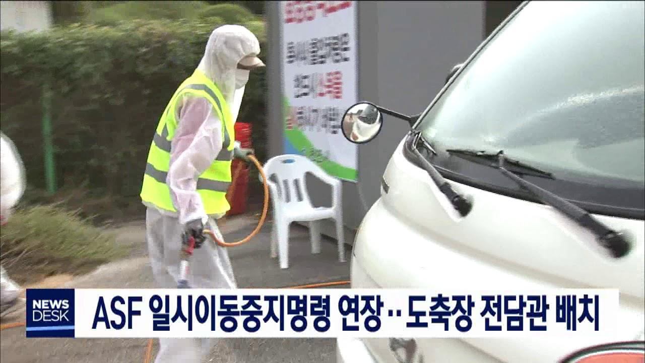 ASF 일시이동중지명령 연장…도축장 전담관 배치