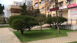 Ну прям сегодня Лето наступило в Сочи! 19 марта 2018 г.🌞