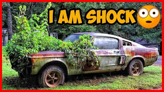 Abandoned Shelby GT500 1967 model