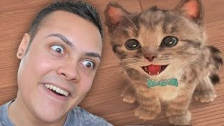 PLAYING KITTEN GAMES (WARNING SO CUTE !!! 🐱