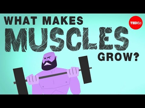 This is What Makes Your Muscles Grow