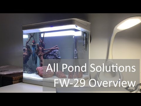 Best value nano tank All Pond Solutions FW-29 Aquarium Review and Overview