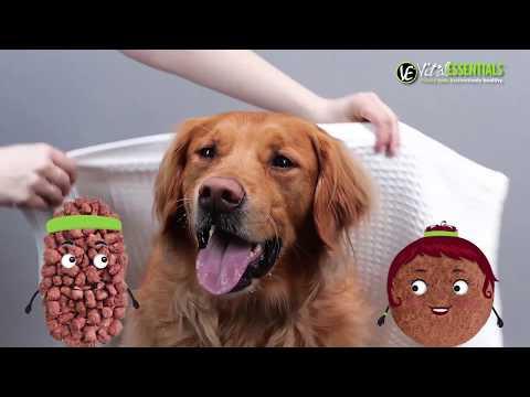 Vital Essentials - Freeze-Dried Beef Mini Nibs Dog Food (1 lb) Video
