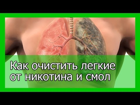 Очищение организма от паразитов при беременности