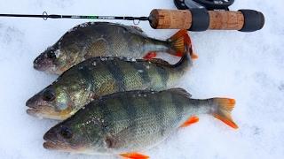 Рыбалка на конус вид под водой