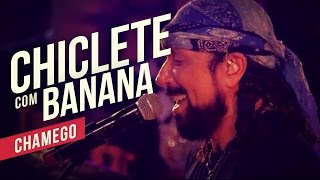 Chiclete com Banana   Chamego   YouTube Carnaval 2014