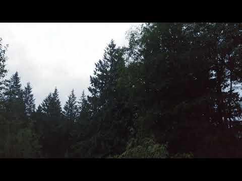 Morning rain (видео)