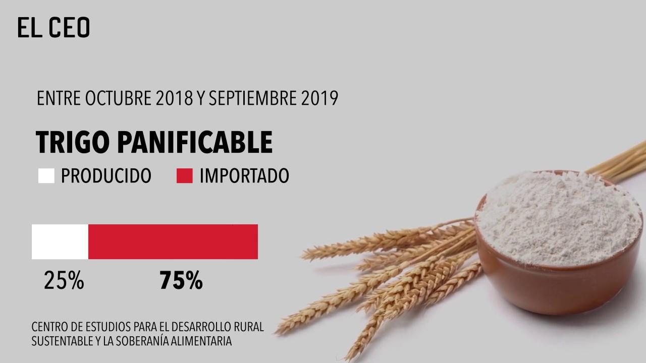 La autosuficiencia alimentaria en México se tambalea