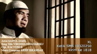 Download lagu Saipul Jamil Virginia Bidadariku Mp3