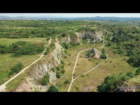 Widok z drona na skaliste zbocze i roślinność kieleckiego Rezerwatu Wietrznia