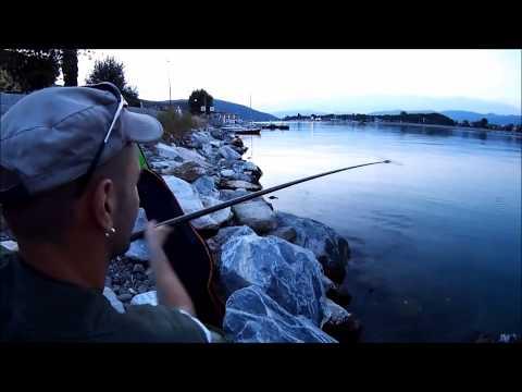 Il compagno per un viaggio su pesca