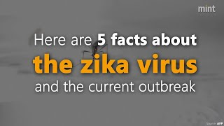 5 facts about the Zika virus and the current outbreak