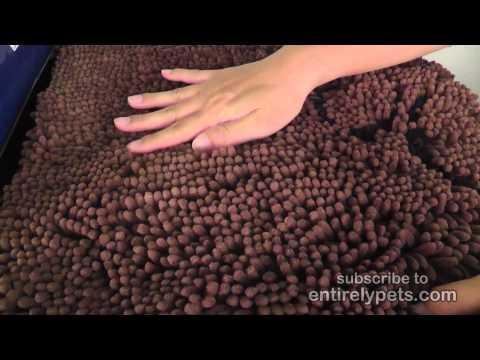 Dirty Dog Doormat - Medium (Brown) Video