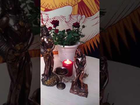 Цветы приносящие овнам удачу