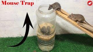 PVC Water Bottle Mouse Trap,DIY make A Mouse Trap Homemade